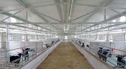 乐东尖峰镇翁毛村黑山羊养殖产业扶贫项目(二期)